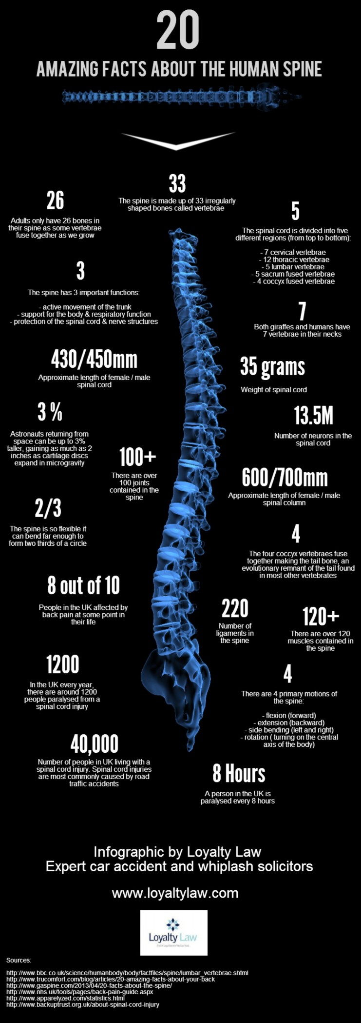 20-amazing-facts-about-the-spine_5294d62fb17b0_w1500